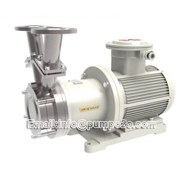 YMW no leakage magnetic vortex pump